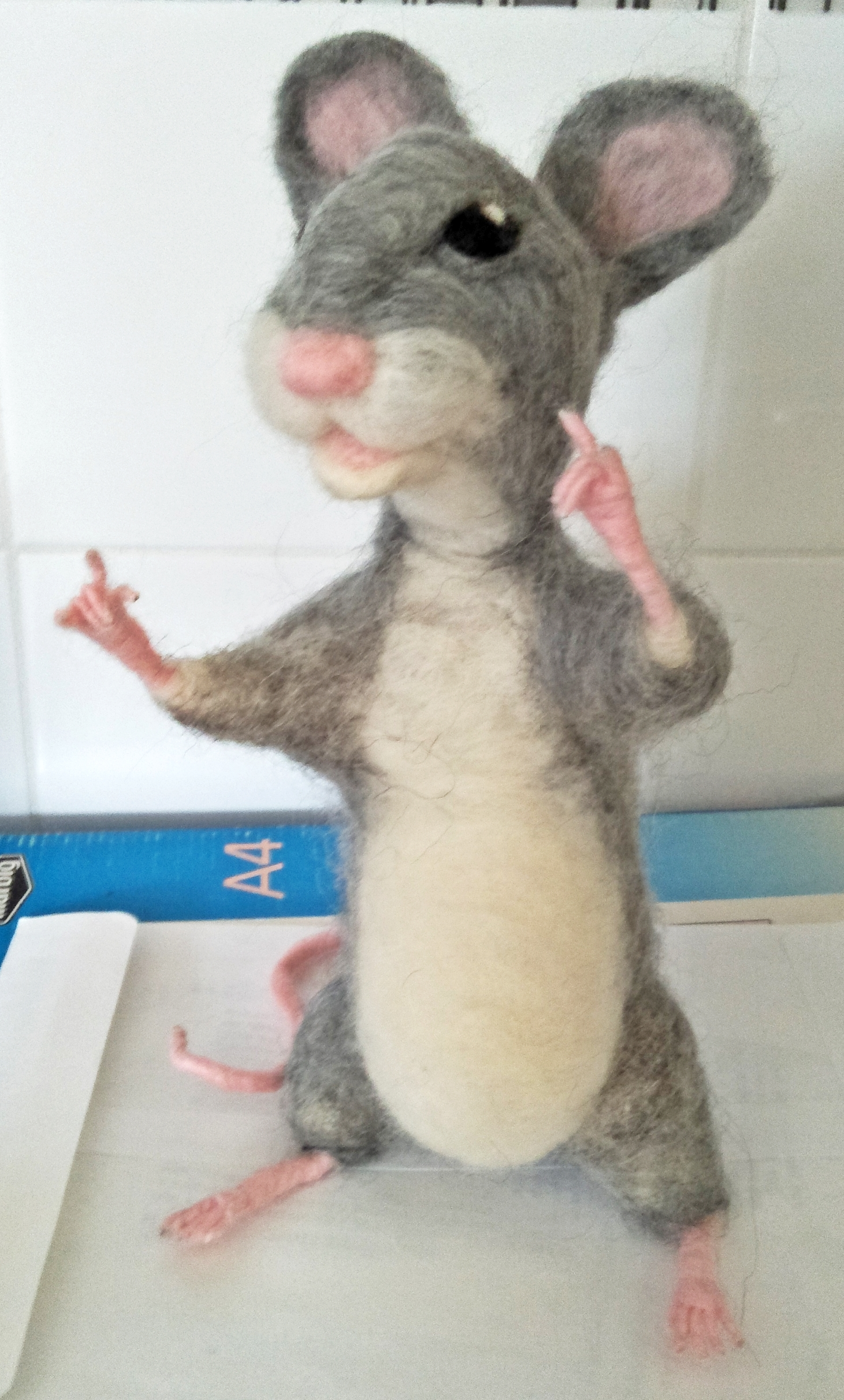 Richard rat or mouse ??